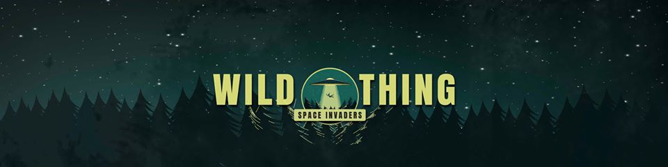 Wild Thing: Space Invaders